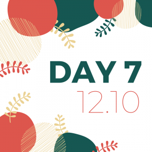 12 days of giveaways - day 7