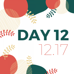 12 days of giveaways - day 12